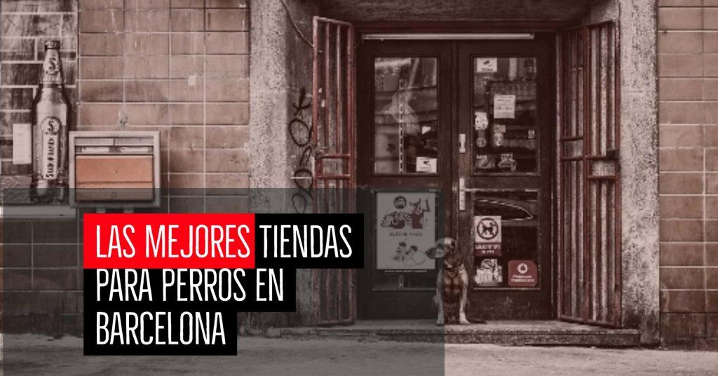 Las mejores tiendas para perros en Barcelona