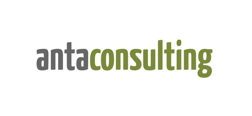 Anta consulting asesores fiscales Madrid